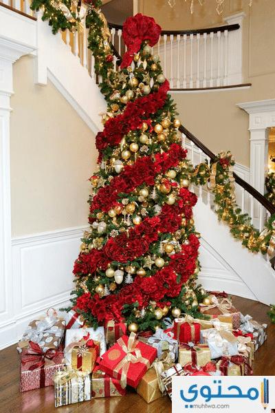 بالصور تزيين شجرة الكريسماس , شكال مختلفة لشجرة الكريسماس 14607