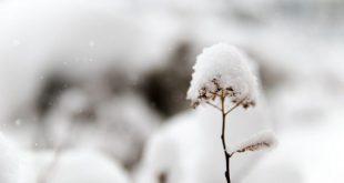 بالصور البرد في الحلم , ما دلالة هذا فى الاحلام 14644 3 310x165