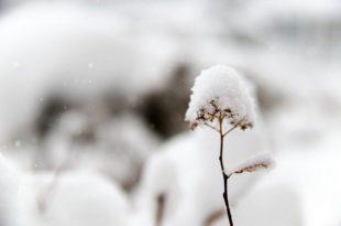 بالصور البرد في الحلم , ما دلالة هذا فى الاحلام 14644 3 310x205