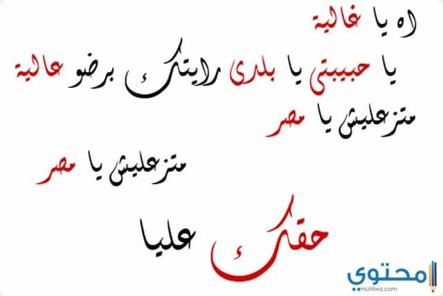 بالصور شعر عن الوطن مصر , كلمات في حب الوطن 14649 1