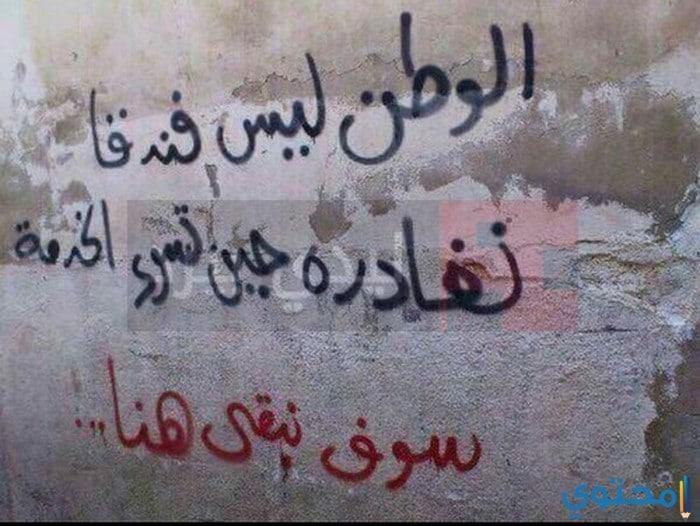بالصور شعر عن الوطن مصر , كلمات في حب الوطن 14649 7