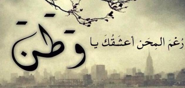 بالصور شعر عن الوطن مصر , كلمات في حب الوطن 14649 8