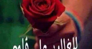 بالصور اجمل الصور لاعز الاصدقاء , وفاء الصديق و صورته 342 11 310x165