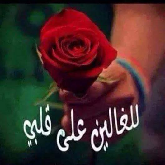 بالصور اجمل الصور لاعز الاصدقاء , وفاء الصديق و صورته 342