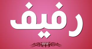 بالصور معنى اسم رفيف , رفيف و مرجعية الاسم 390 1 310x165
