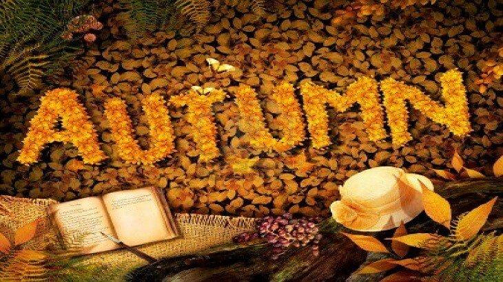 صور موضوع ابداعي عن فصل الخريف , فصل الخريف الرائع