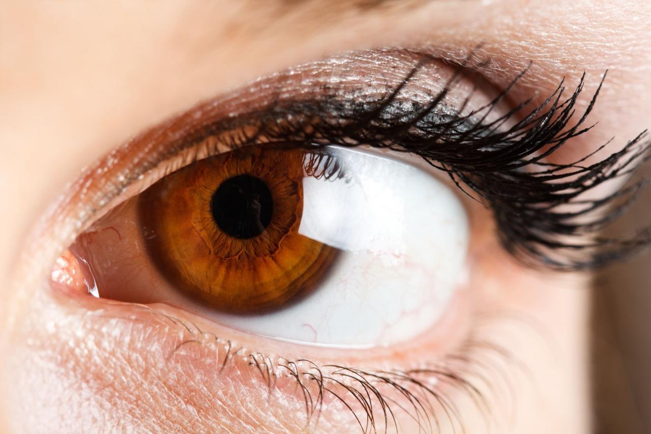 صورة صور عيون عسليات , اجمل صور عيون عسليات 1589 3