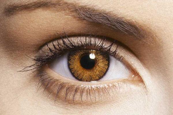 صورة صور عيون عسليات , اجمل صور عيون عسليات 1589 5
