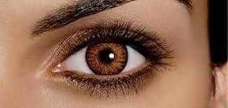 صورة صور عيون عسليات , اجمل صور عيون عسليات 1589 6