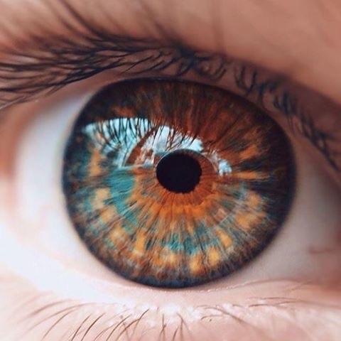 صورة صور عيون عسليات , اجمل صور عيون عسليات 1589 8