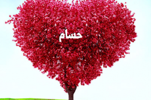 صور صور اسم حسام , صور مميزه لااسم حسام
