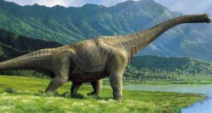 صورة معلومات عن الديناصورات , تاريخ الديناصورات