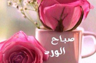 صور اجمل صور الصباح , بدايه الصباح برضا الله