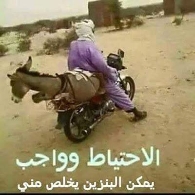 صورة اقوى الصور المضحكة في العالم , صور تبكيك من كثرة الضحك