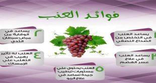 صورة فوائد العنب , معلومات تهمك في فائدة العنب
