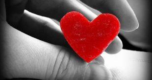صور صور قلوب حب , اجمل صور قلوب حب روعه