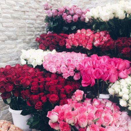 صورة صور ورد خلفيات , اجمل خلفيات الورد بالصور
