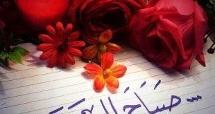 صور صور صباح الورد , الورد في الصباح ومدي تاثيره