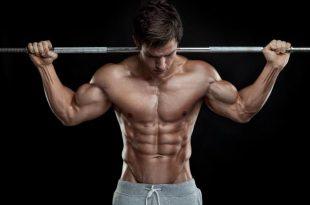 صورة صور عضلات قويه , اروع العضلات المذهلة والخارقة