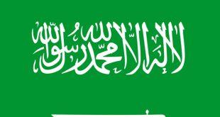 صورة اعلام الدول العربية , سحر الاعلام الجذابة والمشوقة