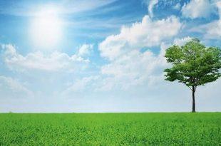 صورة الحفاظ علي البيئة , نصائح ضرورية ومهمه لبيئة نظيفة ومتطورة