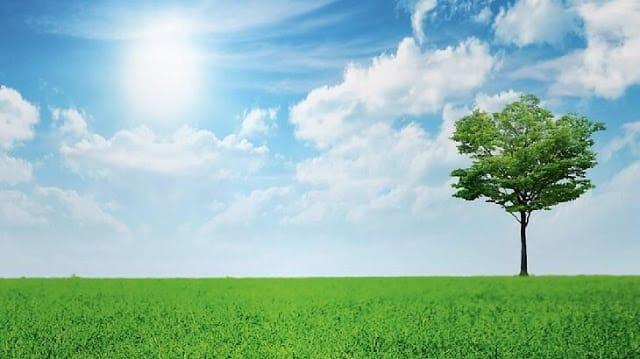 صورة نصائح للحفاظ علي البيئة , نظافة البيئة واجب علي كل شخص