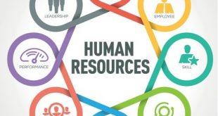 صورة مهام ادارة الموارد البشرية , التعيين والتدريب من احدي مهام ادارة الموارد البشرية