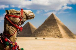 صورة معلومات عن مصر , حقائق مذهلة لا تعرفها عن مصر