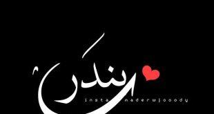 صورة معنى اسم بندر, اروع اسماء ولاد فارسية