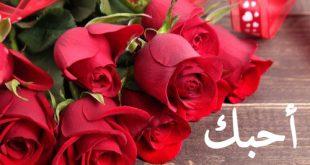 صورة ورود رومانسية , اجمل واروع ورد الحب والرمانسية