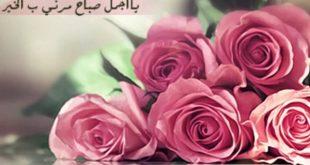 صورة صباح الورد حبيبي , احلي صباح لحبيبي الجميل