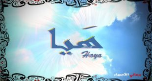 صورة معنى اسم هيا, من اجمل مايعرف عن اسم هيا