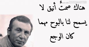 صورة عمرى ماشوفت شعر بالروعه دي, شعر نزار قباني