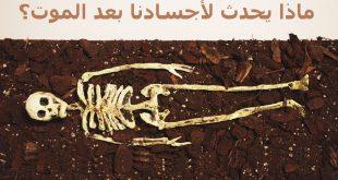 صورة معقول هو ده اللي بيحصل حاجه اغرب من الخيال, ماذا يحدث بعد الموت