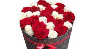 حلمت بالورده ارجو تفسيرة , تفسير حلم اهداء الورد