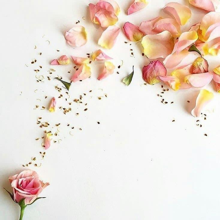 صورة صور بطاقات جميلة جدا جدا, بطاقات حب 6322 2